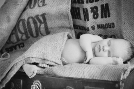 newborn photography sutherland shire