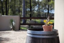 Casa La Vina Hunter Valley_0063